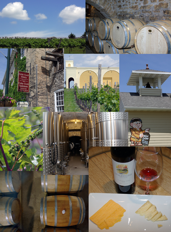 Wisconsin Wineries and Vineyards